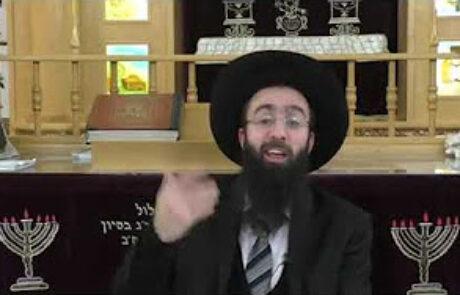 הרב אלמוג לוי